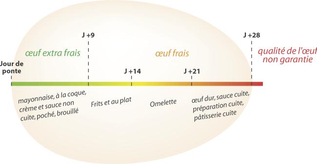 Pourquoi manger des oeufs v g bon - Conservation aliments cuits hors frigo ...